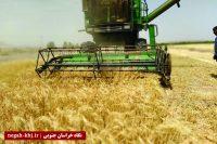 ۴۶ هزار نفر زیرپوشش صندوق بیمه اجتماعی کشاورزان و عشایر