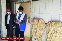 کمپین نظارت بر نانواییها در بیرجند راهاندازی میشود