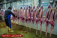 گوشتهای قربانی را پیش از مصرف حداقل ۲۴ ساعت در یخچال نگهداری کنید