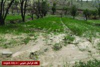 باران به محصولات انگور، زرشک و گردو خسارت وارد کرد