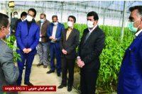 قابلیت توسعه خراسان جنوبی با توجه به محصولات کشاورزی